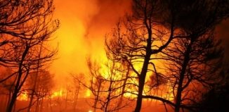 Wolsztyńscy strażacy niosą pomoc Szwedom